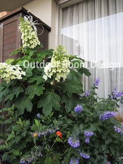 veranda_june.jpg
